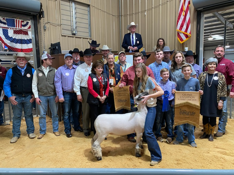 2020 San Angelo Stock Show Premium Sale Grand Champion Lamb by Kyndal Edwards (LIVE! Photo/Yantis Green)