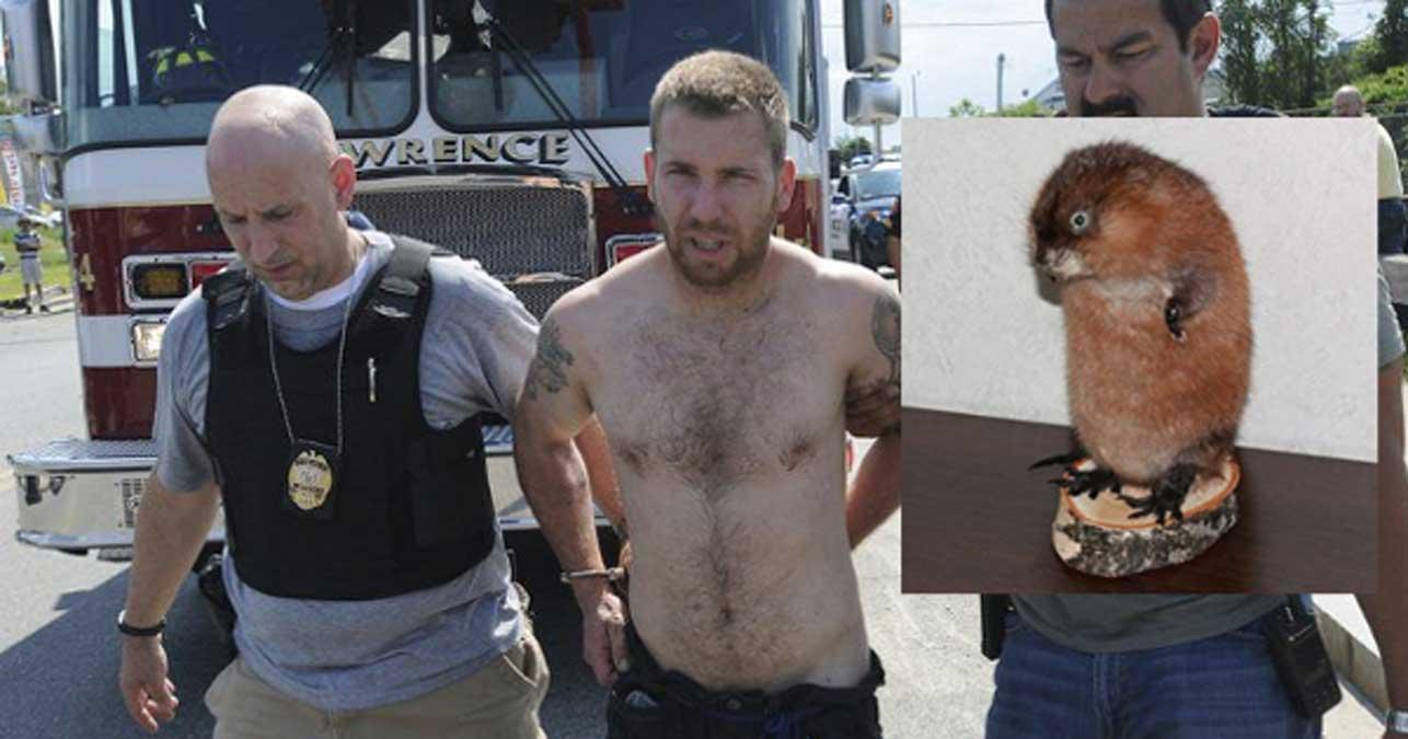 Barry Franklin, the Newcastle, Pennsylvania taxidermist who assaulted another man with a stuffed beaver. (K Hemphill)
