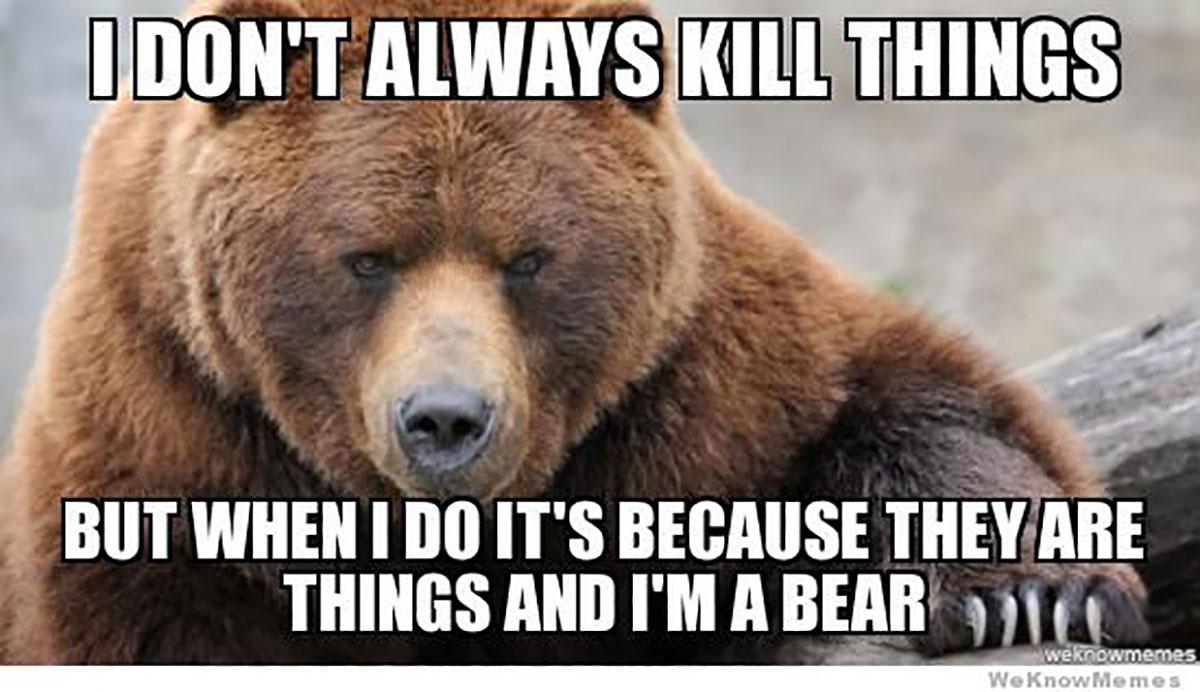 Bear! (Contributed/Kendal Hemphill)