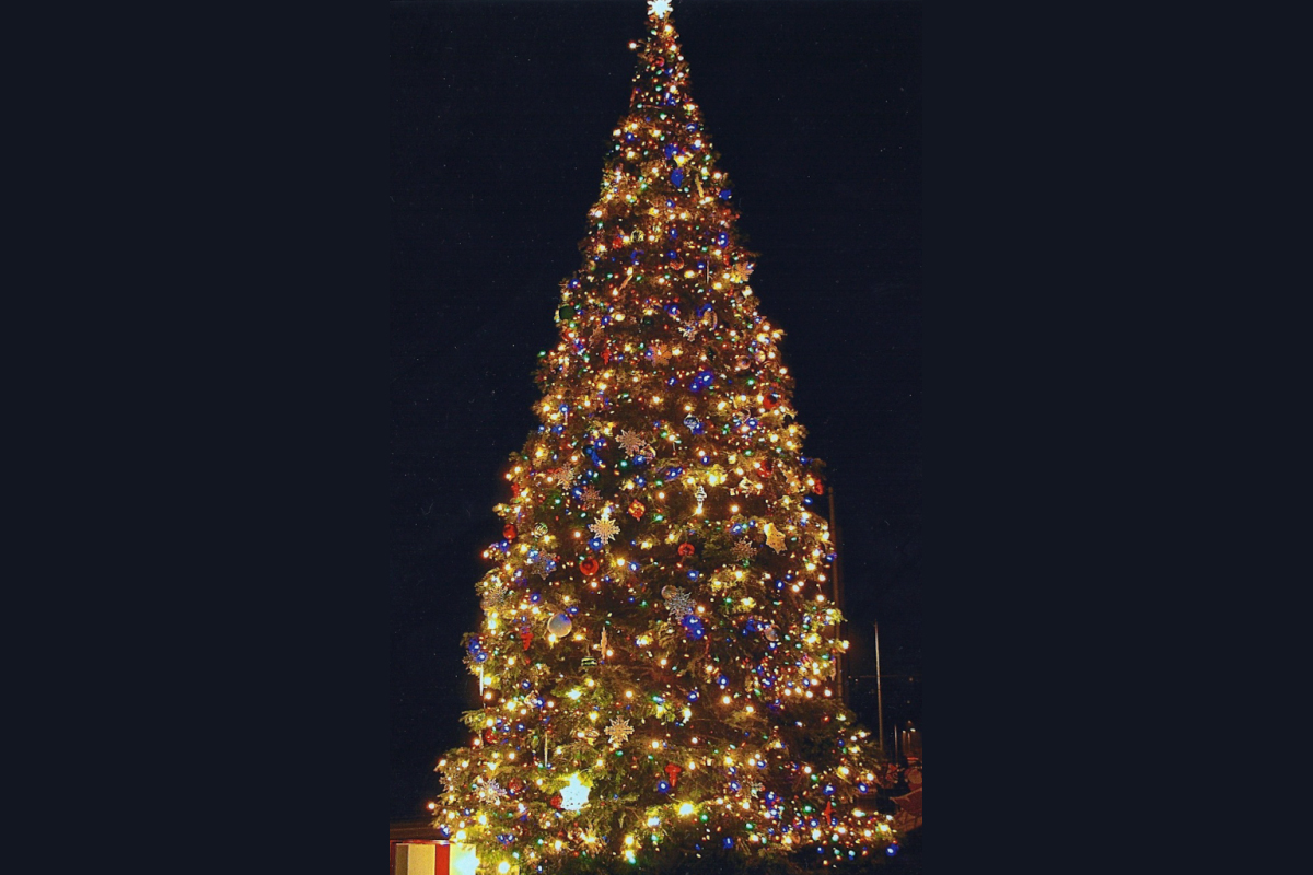 Lights are bad, especially on big Christmas trees.