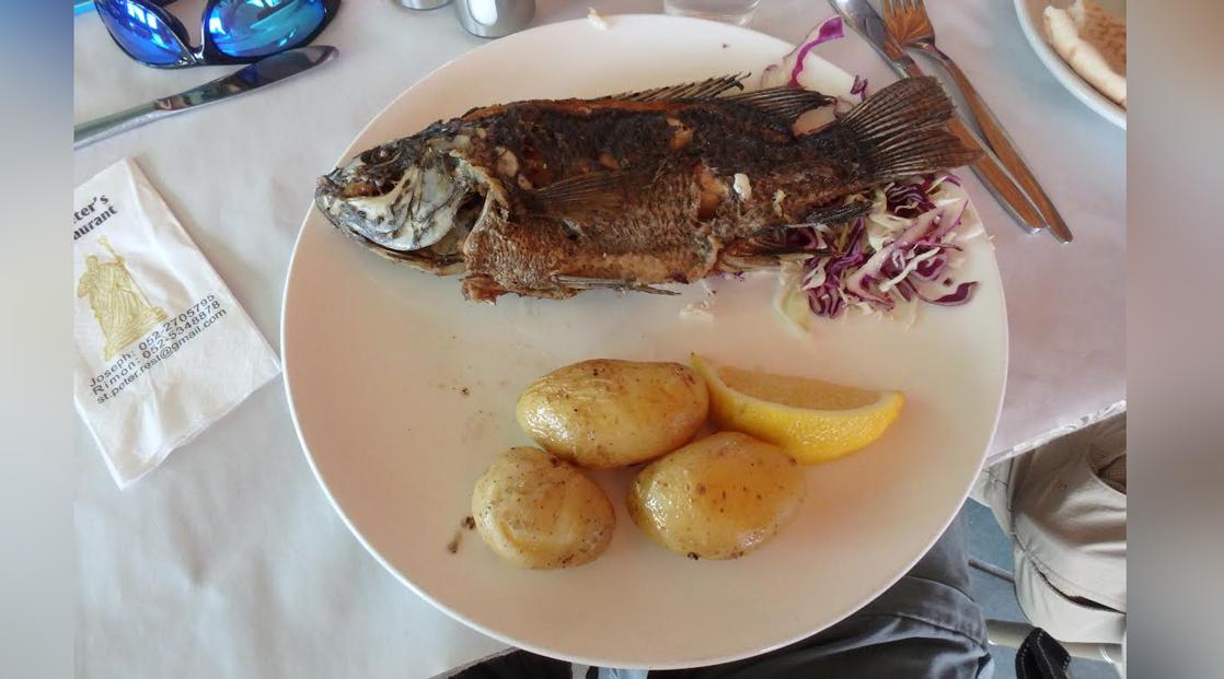 memorable fish lunch