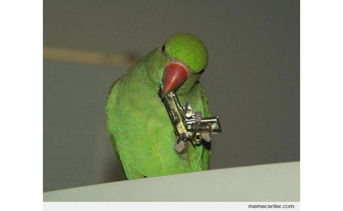 The gangster parrot