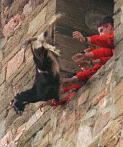 Goat Throw (Photo provided by Kendal Hemphill)