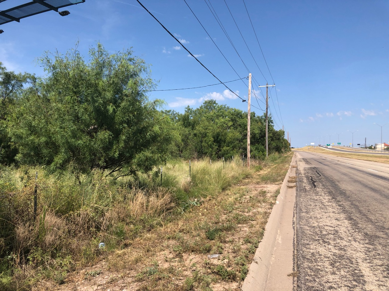 The 21-acre plot of land where apartments are proposed is currently overgrown. (LIVE! Photo/Joe Hyde)