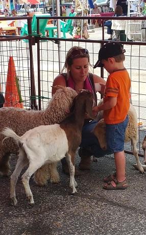 Petting Zoo (photo courtesy Cindy Thomas)