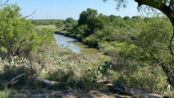 Proposal Would Invest $50 Million Per Year to Recover Wildlife in Texas