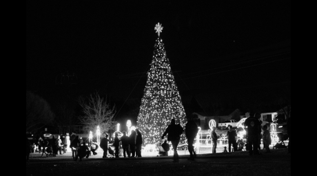 Midland Christmas Tree in 2019 (Contributed / City of Midland)