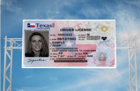 Sample Texas License
