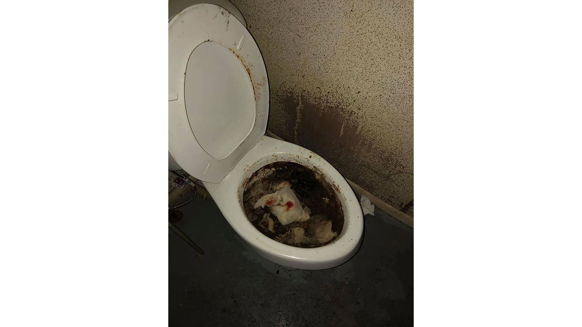 Don't ask what's in the toilet inside the Del Rio pet adoption hell hole. (Contributed/Howard Fletcher)