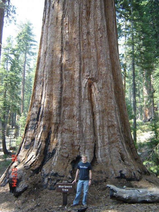 Yosemite (Photo provided by Kendal Hemphill)
