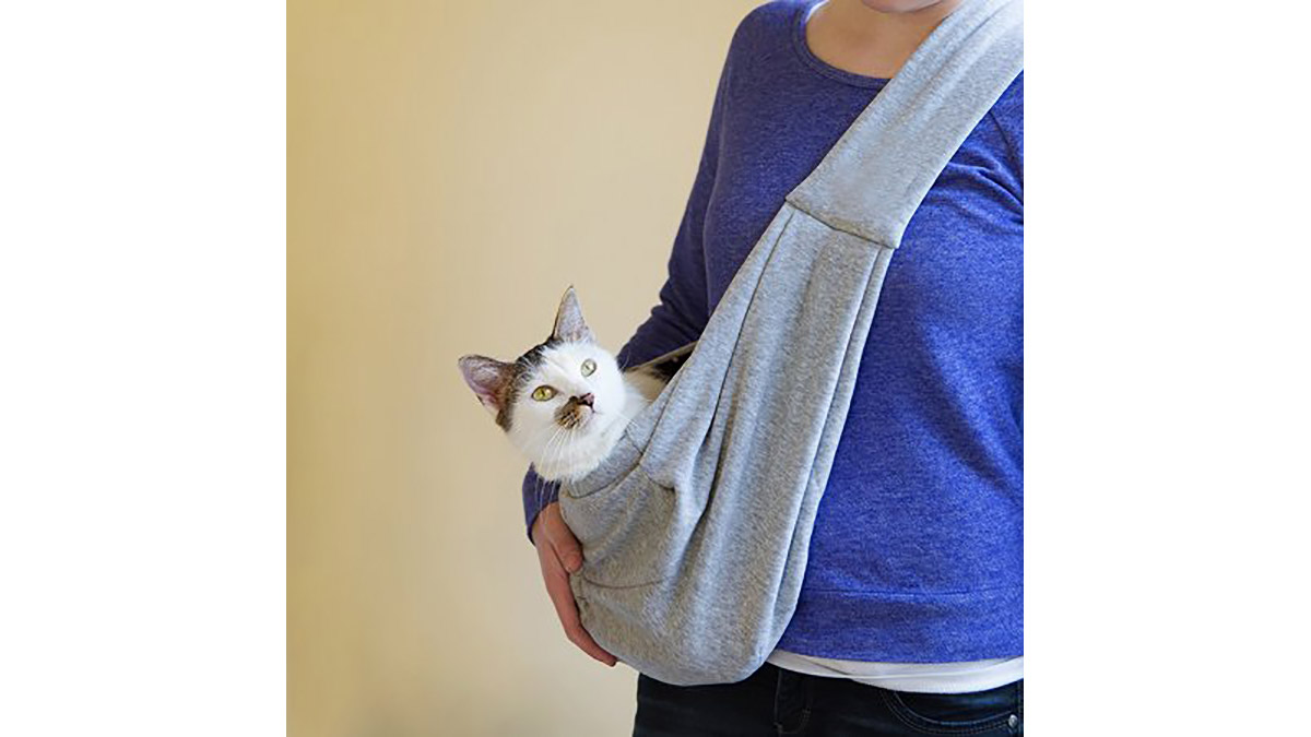 Another cat in a sling